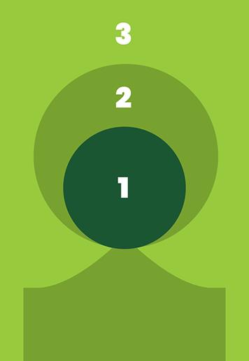 TreeInfographic2